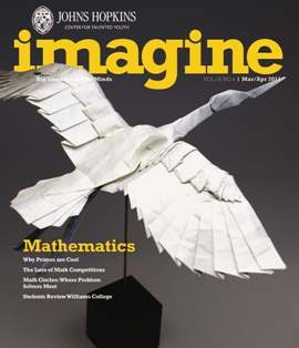 Imagine Math Issue