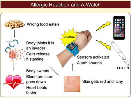 Allergic Reaction and A-Watch: Wrong food eaten, Body thinks it is an invader, cells release histamine, body sweats, blood pressure goes down, heart beats faster, skin gets red and itchy, sensors activated alarm sounds, parent texted, epipen located